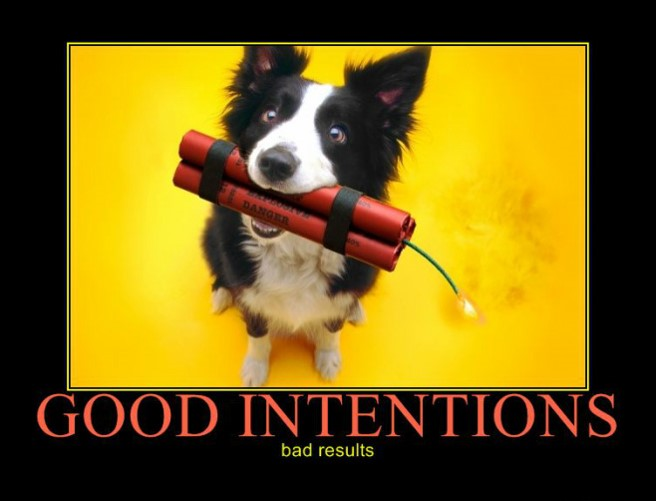 The best intentions do NOT always produce good results.